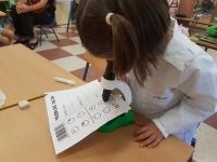 PROYECTO INFACIENCIA | El alumnado cordobés de Educación Infantil conoce la  química a través de científicas históricas